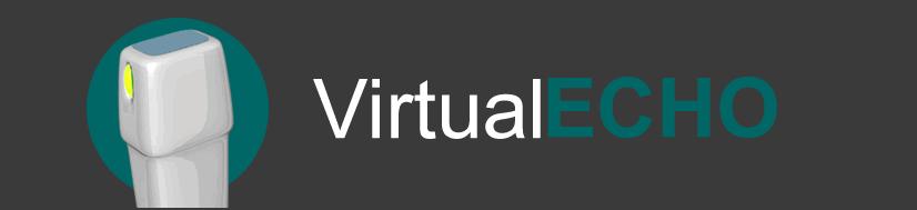 VirtualEcho echocardiography simulator by MedicalWorks Egypt