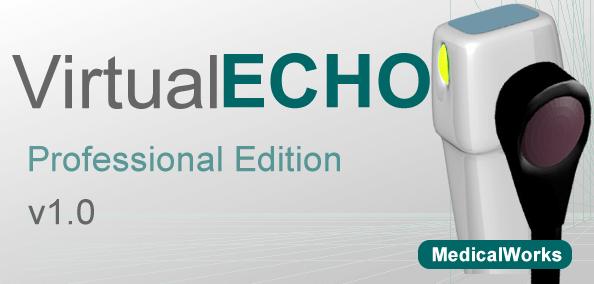 purchase virtualecho pro